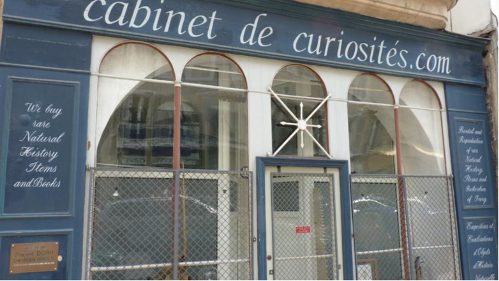 Le cabinet de curiosit s de la rue saint jacques - Le cabinet de curiosites ...