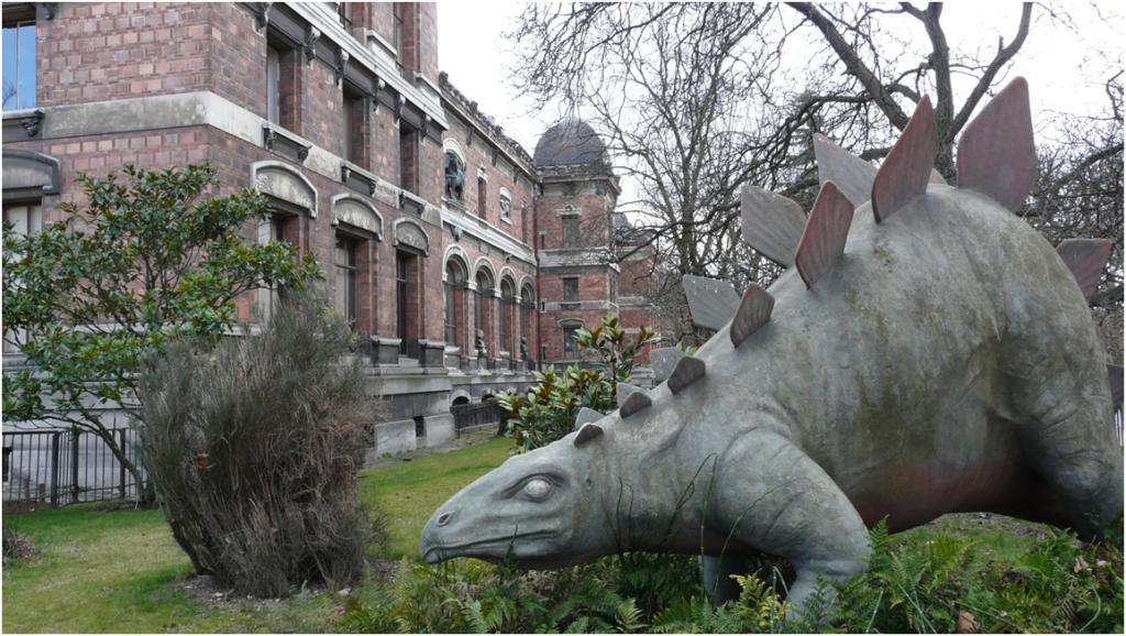 Promenade au jardin des plantes - Jardin des plantes paris dinosaures ...