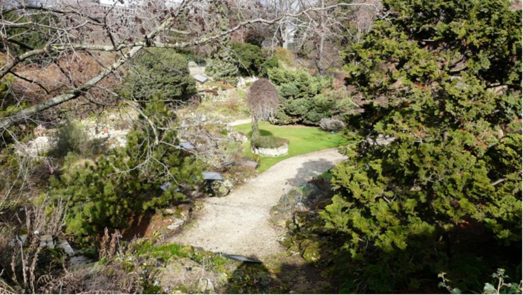 Le jardin alpin for Animalerie du jardin des plantes