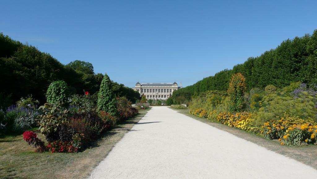 Promenade au jardin des plantes for Au jardin des plantes