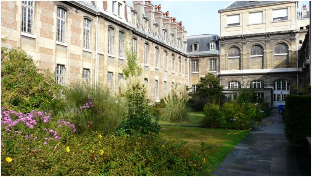 Le jardin de la facult de pharmacie - Pharmacie du jardin des plantes ...