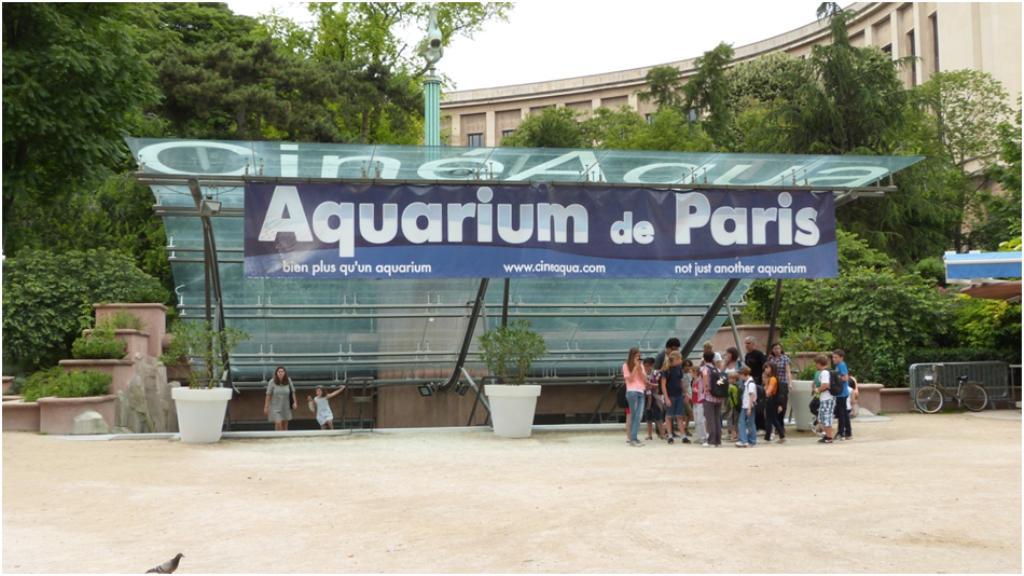 L 39 aquarium de paris - Aquarium de paris jardin du trocadero ...